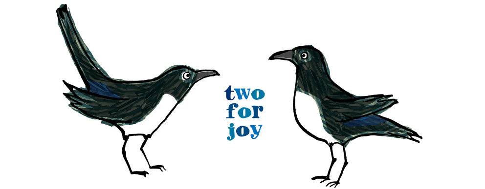 magpies_jane_porter