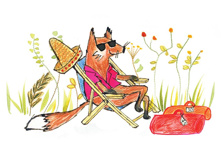 fox_JP